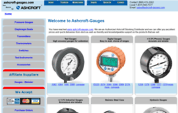 ashcroft-gauges.com