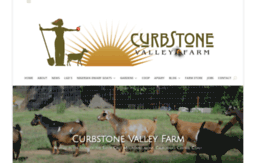 curbstonevalley.com
