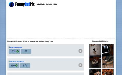funnycatpix com website funny cat pictures